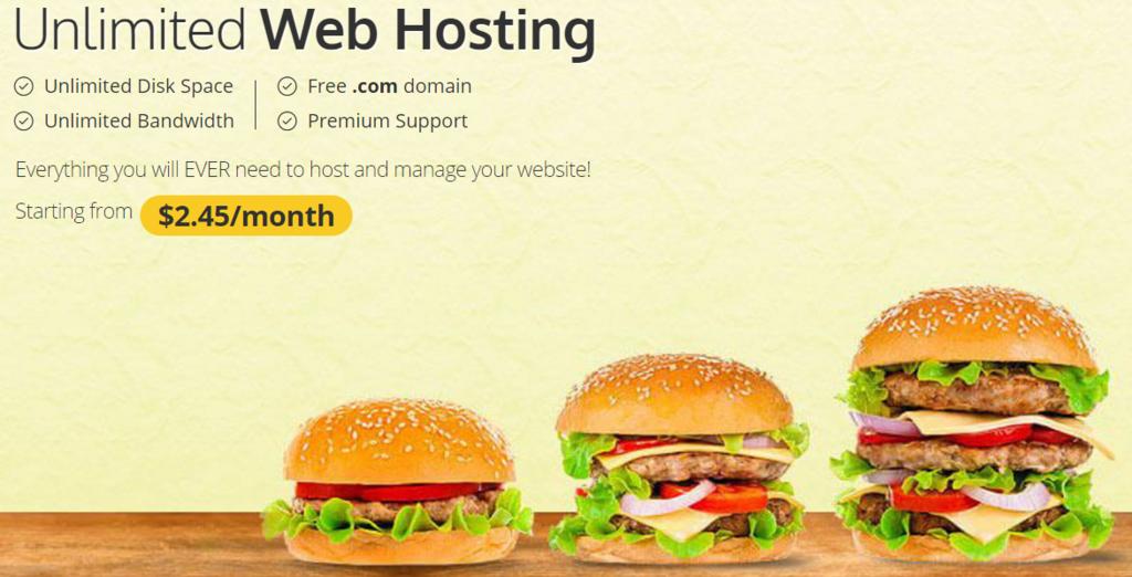 que es un web hosting