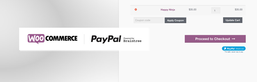 paypal by braintree banner