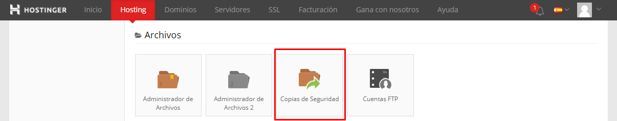 copia seguridad wordpress
