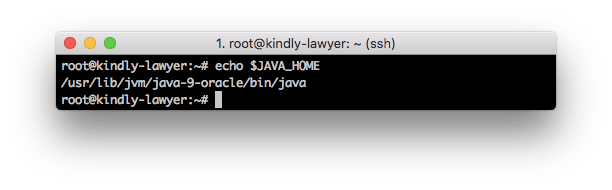 variable-java-home
