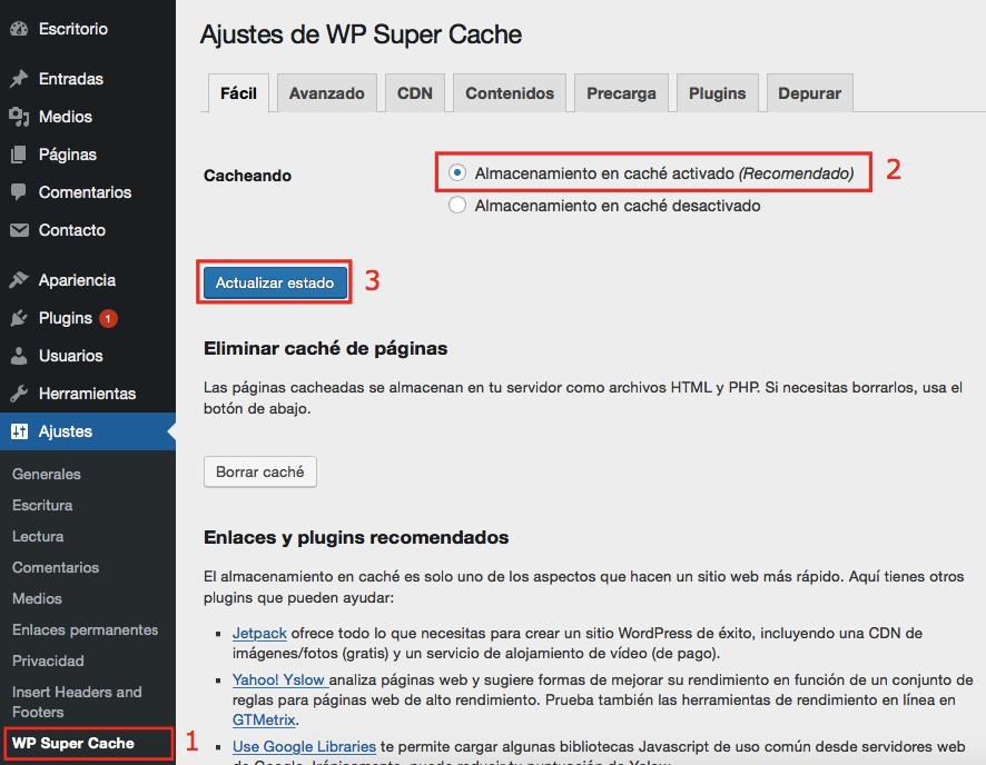 Página de configuración de WP Super Cache