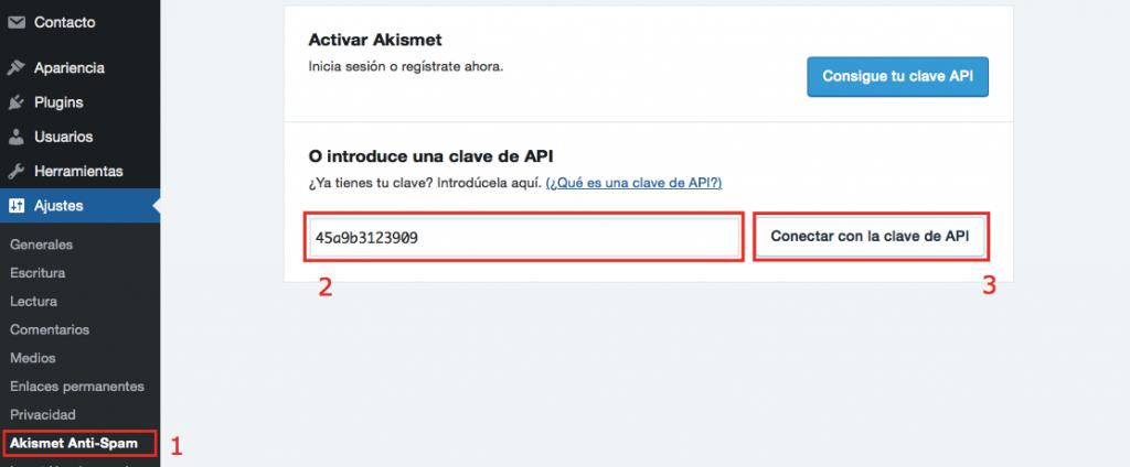 Clave de la API de la página de configuración de Akismet
