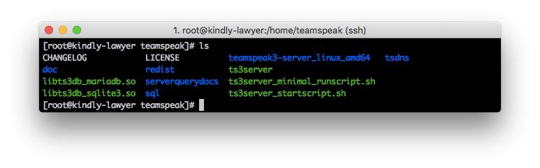 Archivos del servidor TeamSpeak 3 listados