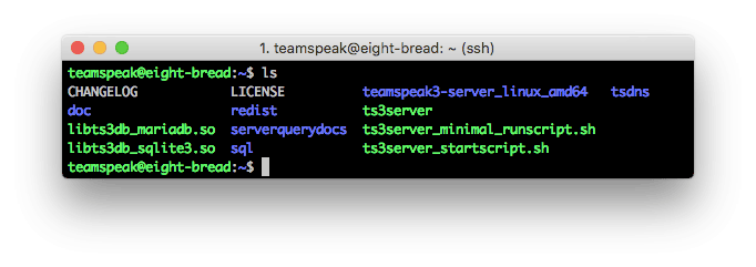 Contenidos del servidor TeamSpeak 3