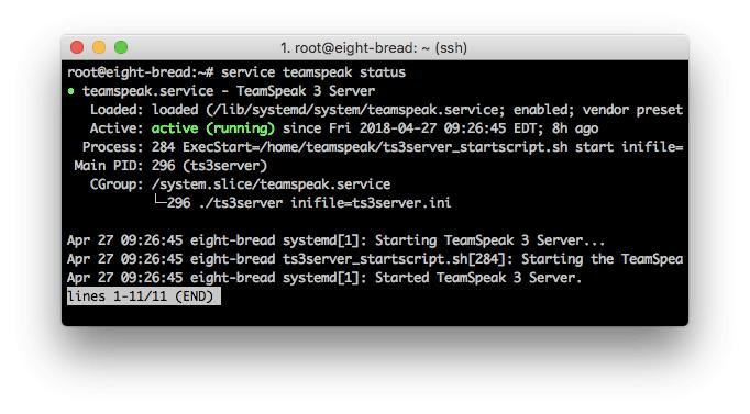 Un estado detallado del servidor TeamSpeak3