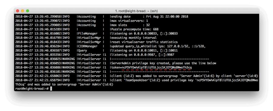 Token del servidor TeamSpeak 3