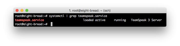 El servidor TeamSpeak 3 se ejecuta correctamente.