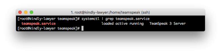 Comprobando si el servidor TS3 se inicia al arrancar