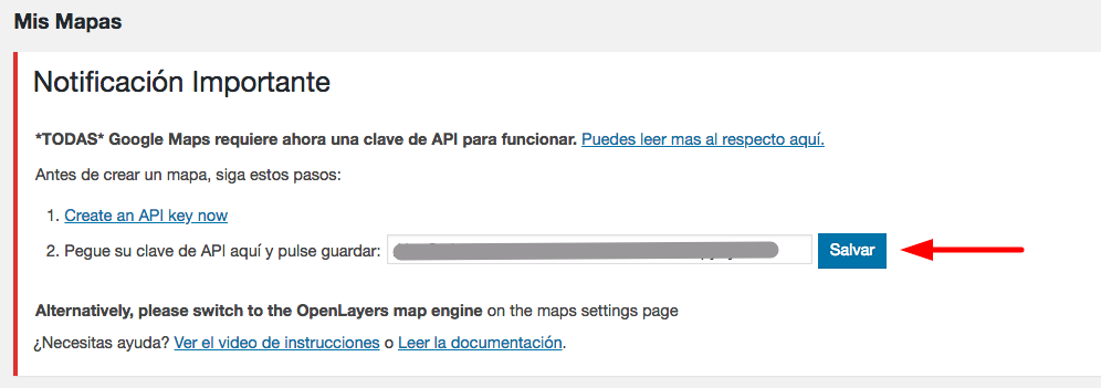 Pegando tu clave API en WordPress.