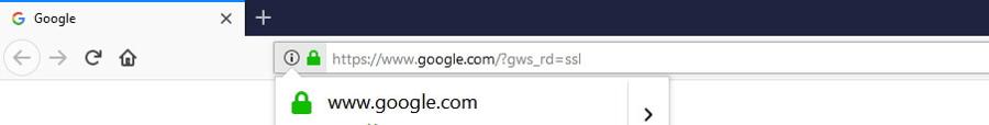 El candado verde de SSL.