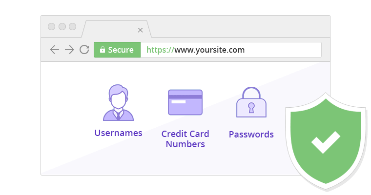 ¿Qué protegen los certificados SSL/TLS?