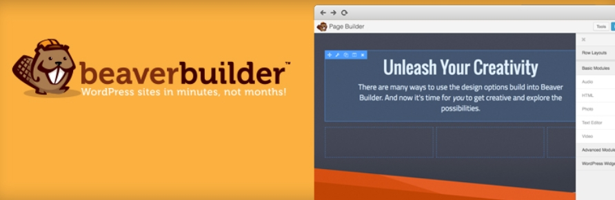El plugin Beaver Builder.
