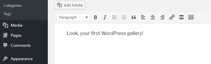 insertando galería en el editor