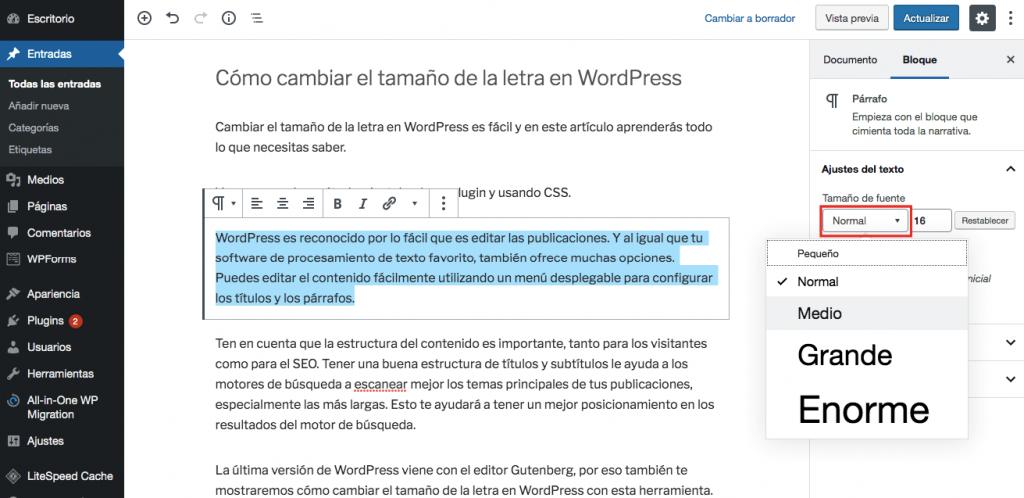 Cómo cambiar el tamaño de fuente en WordPress usando las opciones predeterminadas