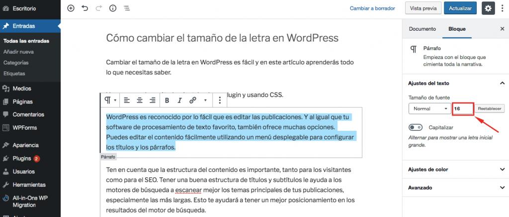 Cómo cambiar el tamaño de letra en WordPress usando entrada manual