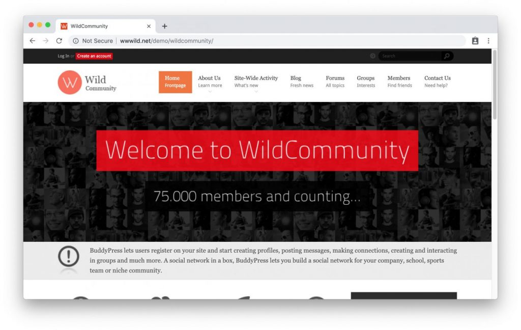 Página principal de WildCommunity Tema Intranet WordPress