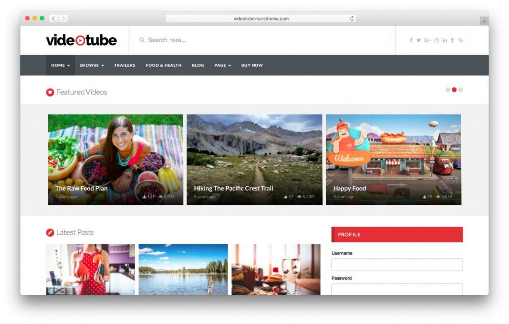 tema de video videotube wordpress