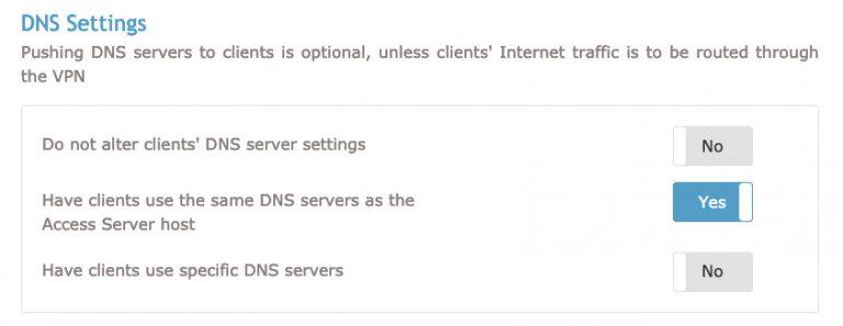 Sección de configuración de DNS de OpenVPN