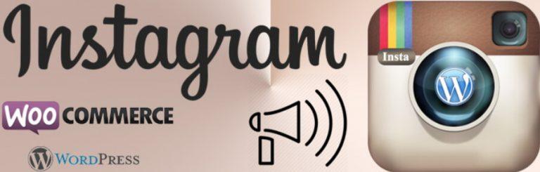 El plugin WP Instagram Post y Widget.