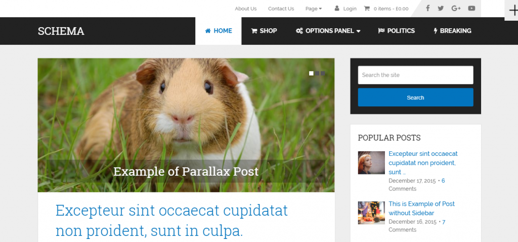 Página del tema de WordPress Schema