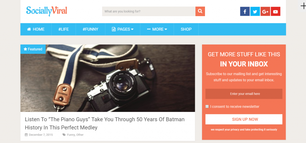 Página del tema de WordPress SociallyViral